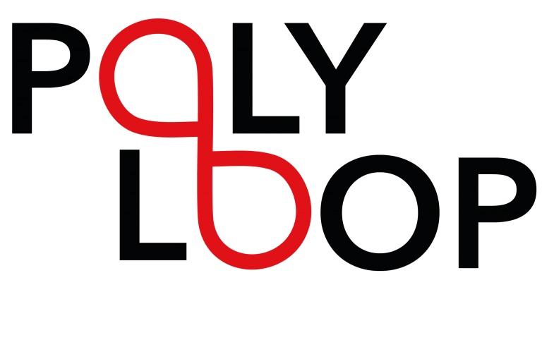 PolyLoop 3D